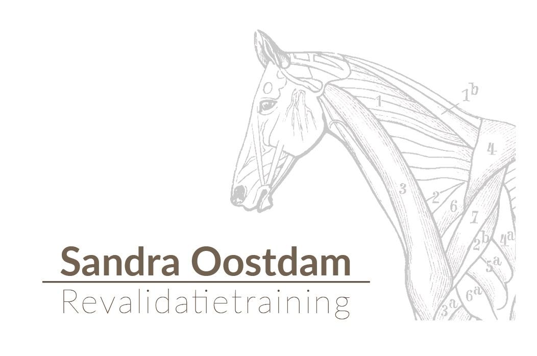 Sandra Oostdam Revalidatietraining